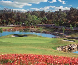 Reidy Creek Golf Course Image Thumbnail