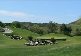 Twin Oaks Golf Course Image Thumbnail
