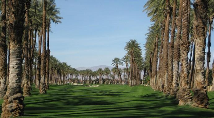 The palms hole14