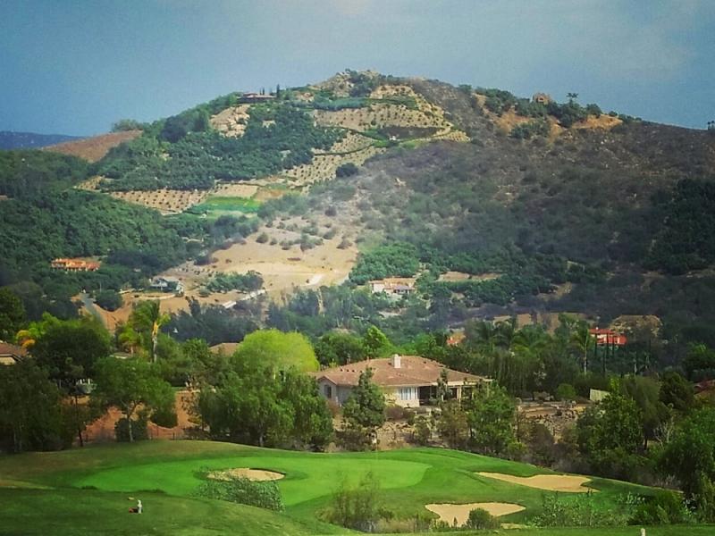 Golfclubofcalifornia cf 1000x1000