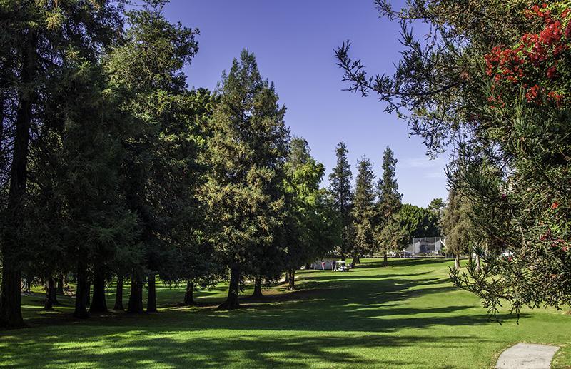 Rancho 4