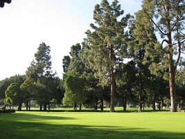 Penmar Golf Course Image Thumbnail