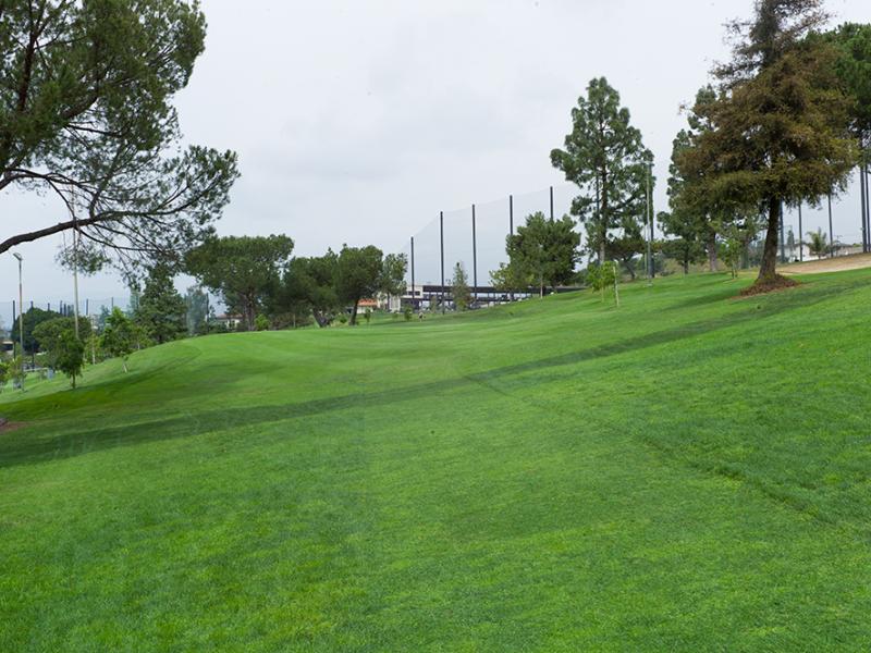 Monterey park - hole 6