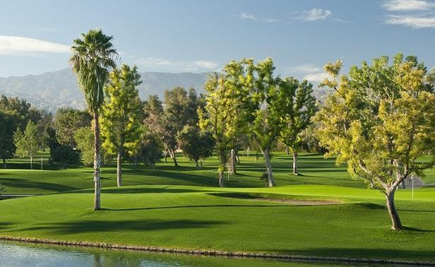 Avondale golf club 3